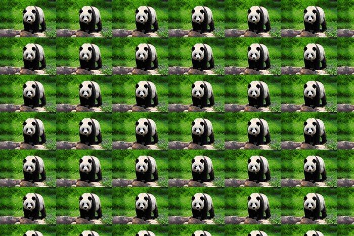 Vinylová Tapeta Panda - Témata