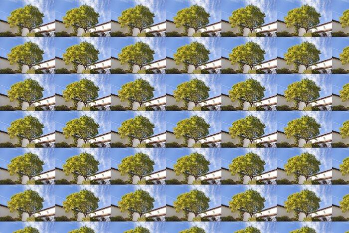Vinylová Tapeta Mission San Luis Obispo de Tolosa Courtyard Kalifornie - Americká města