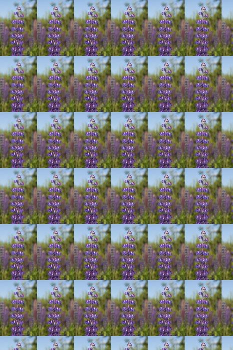 Vinylová Tapeta Wild Vytrvalá Lupin (Lupinus perennis) - Květiny