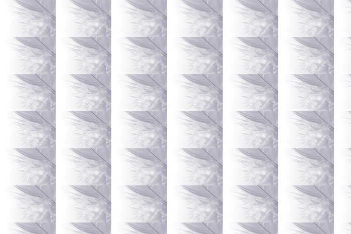 Vinylová Tapeta Bílá na bílé - Pozadí