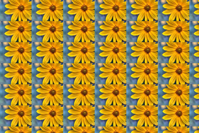Vinylová Tapeta Helianthus tuberosus 뚱딴지 - Květiny