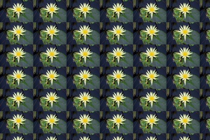 Vinylová Tapeta Lotusblume - Rostliny