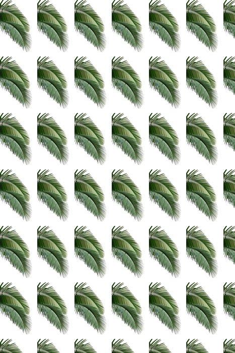 Vinylová Tapeta Listy palmy - Nálepka na stěny