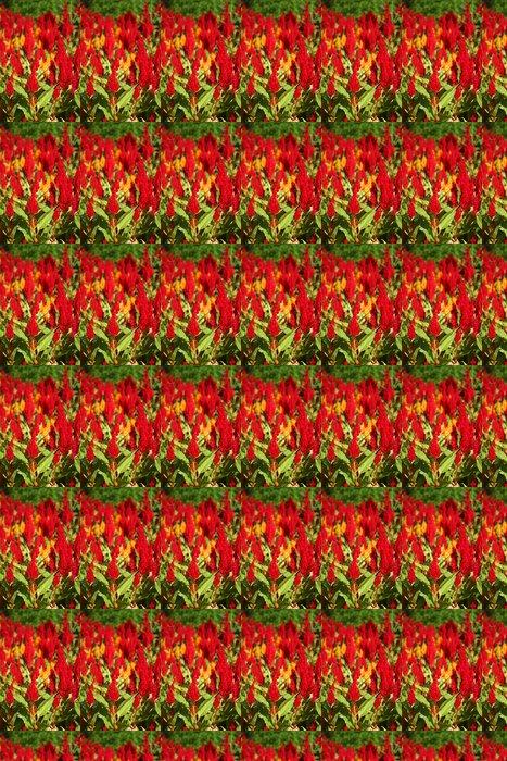 Vinylová Tapeta Celosia květiny - Květiny
