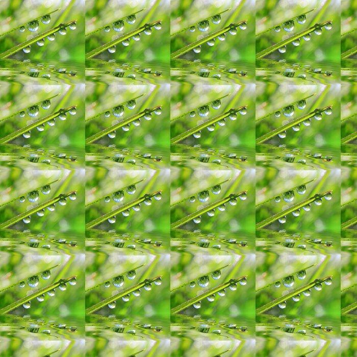 Vinylová Tapeta Čerstvé zelené trávy s kapkami rosy detailní. Přirozeného pozadí. - Roční období