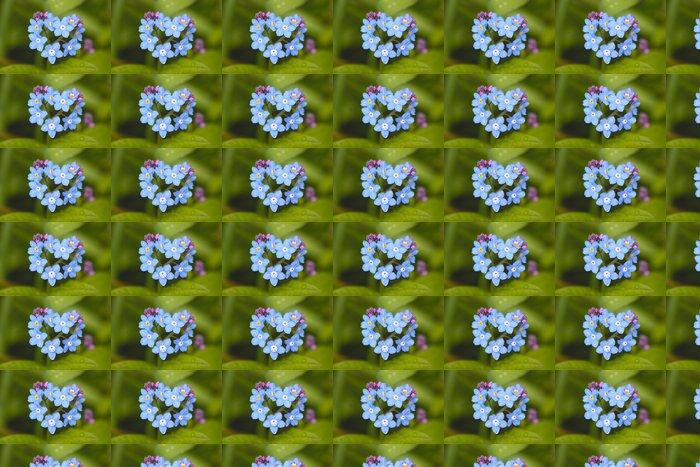 Vinylová Tapeta Pole Forget-me-not (Myosotis arvensis) - Květiny