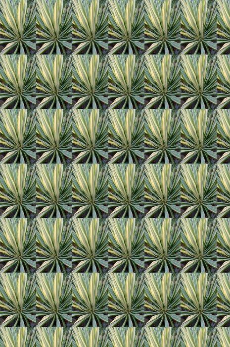 Vinylová Tapeta Bílá zelená furcaria sukulentních rostlin - Rostliny