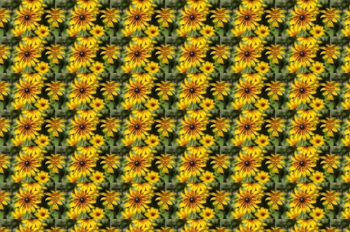 Vinylová Tapeta Krásné zářivé barevné květiny je - Květiny