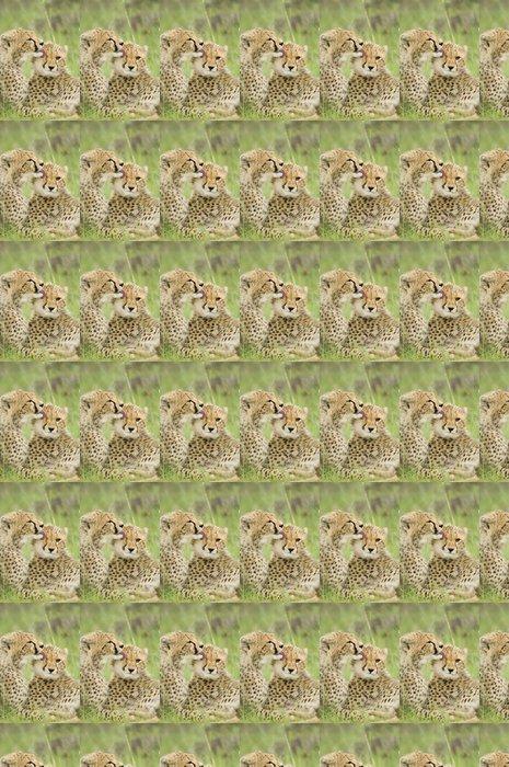 Vinylová Tapeta Cheetah mláďata - Afrika