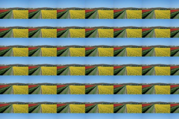 Vinylová Tapeta Bulbfields v Holandsku - Květiny