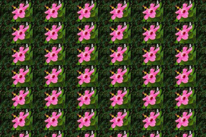 Vinylová Tapeta Růžový květ Hibiscus - Květiny