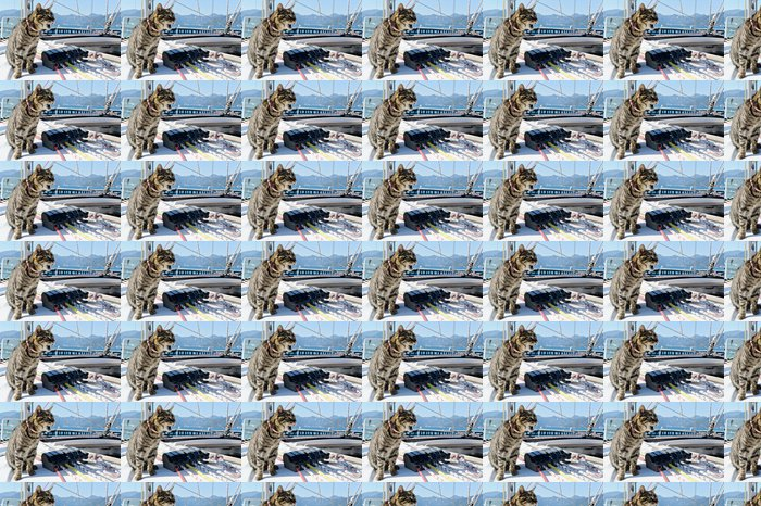 Vinyltapete Skipper Katze mit Segelyacht Takelage - Boote