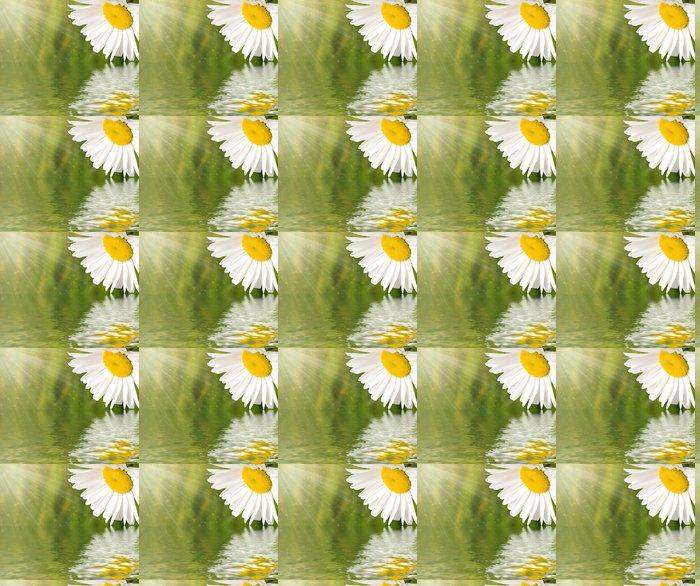 Vinylová Tapeta Heřmánek květ odráží ve vodě - Květiny