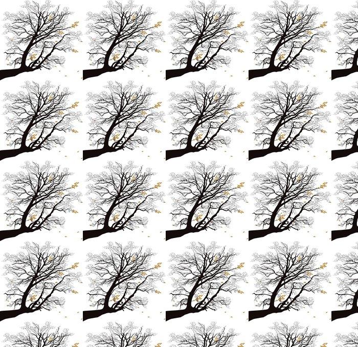 Vinylová Tapeta Podzimní větev stromu na bílém - Styly