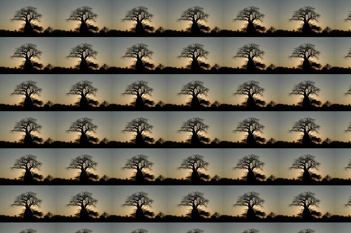 Vinylová Tapeta Baobab je contraluz - Témata