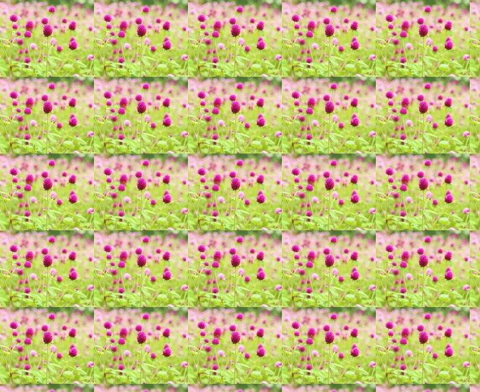Carta da Parati a Motivi in Vinile Globe amaranto o Gomphrena globosa fiore - Fiori