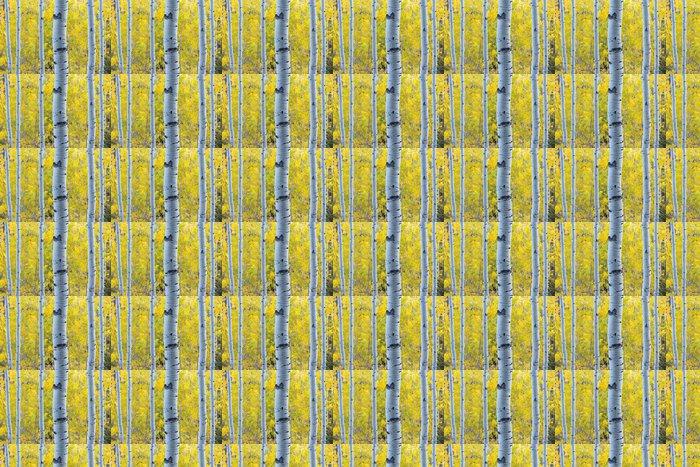 Vinylová Tapeta Zlatožluté Aspen zanechává modré světlo Aspen kmeny stromů - Roční období