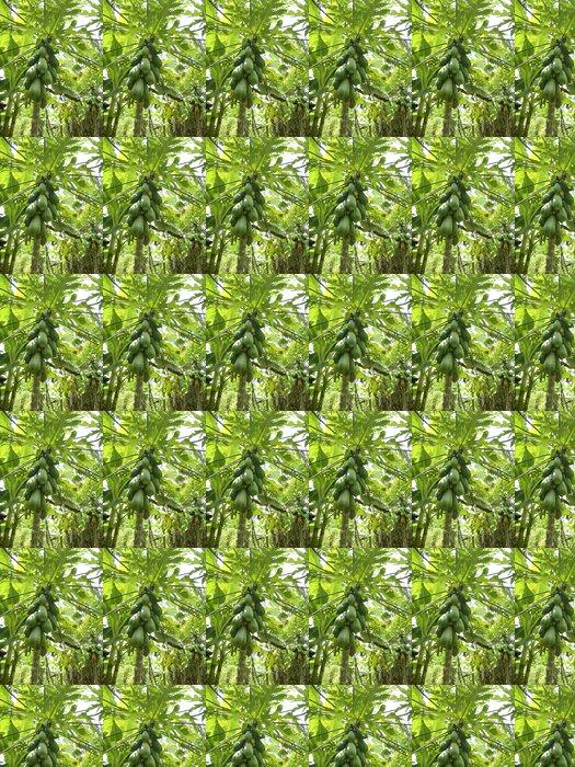 Vinylová Tapeta Papája strom ovoce roste v tropické džungli - Amerika