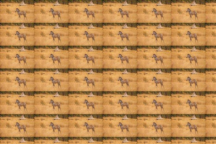 Vinylová Tapeta Burchellova Zebra v Savanna Botswany - Savci