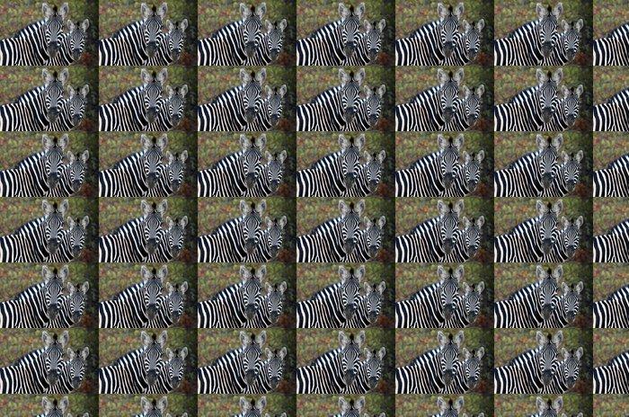 Vinylová Tapeta Wild Zebra 3 - Témata