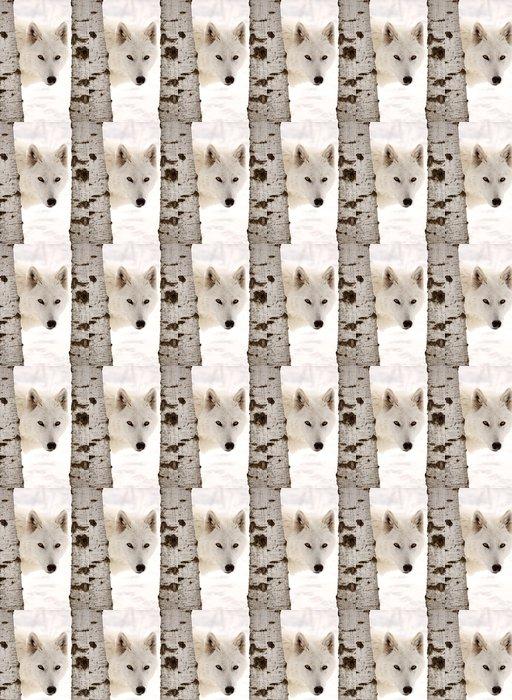 Vinylová Tapeta Arctic Vlk viděl mezi dvěma stromy v zimě -