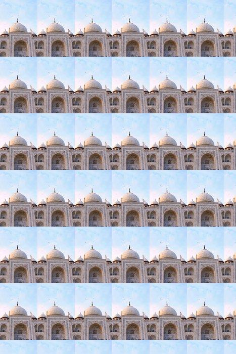 Vinylová Tapeta Vista parciální del Taj Mahal - Asie
