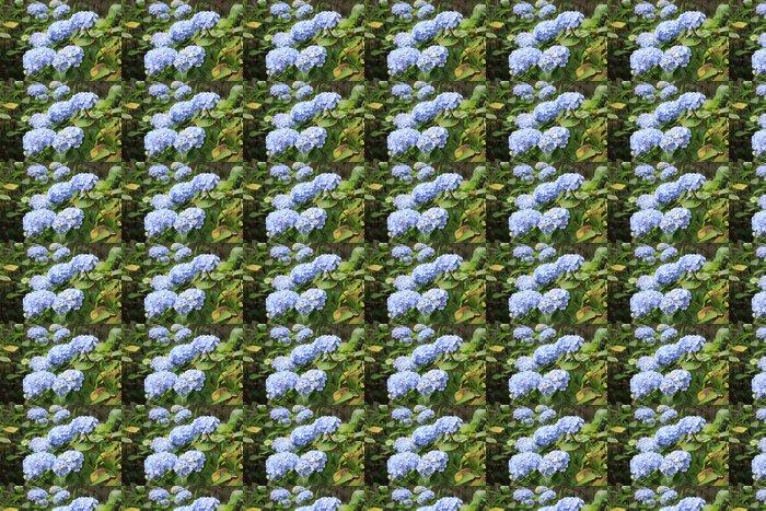 Vinylová Tapeta Modré hortenzie - Květiny