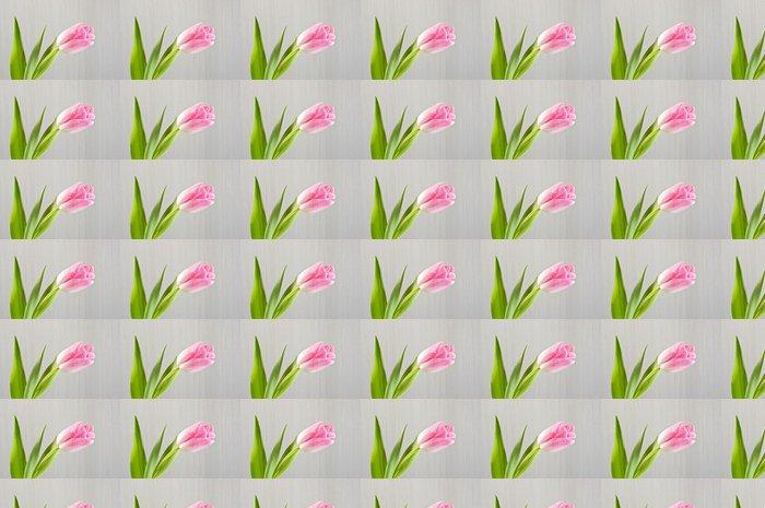 Vinylová Tapeta Růžový tulipán close-up - Štěstí
