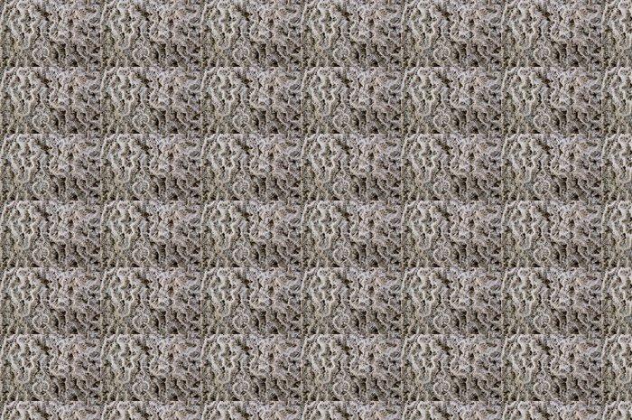 Vinylová Tapeta Korálový útes vzor - Struktury
