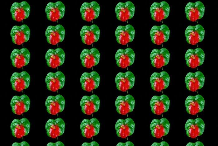 Vinylová Tapeta Flamingoblume - Anthurium 25 - Květiny