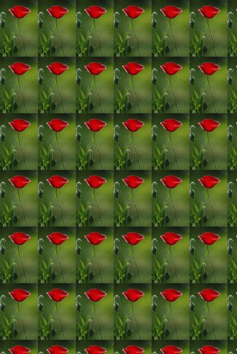 Papel Pintado Estándar Poppies - Flores