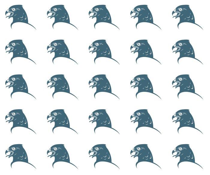 Vinylová Tapeta Falcon hlava - Ptáci