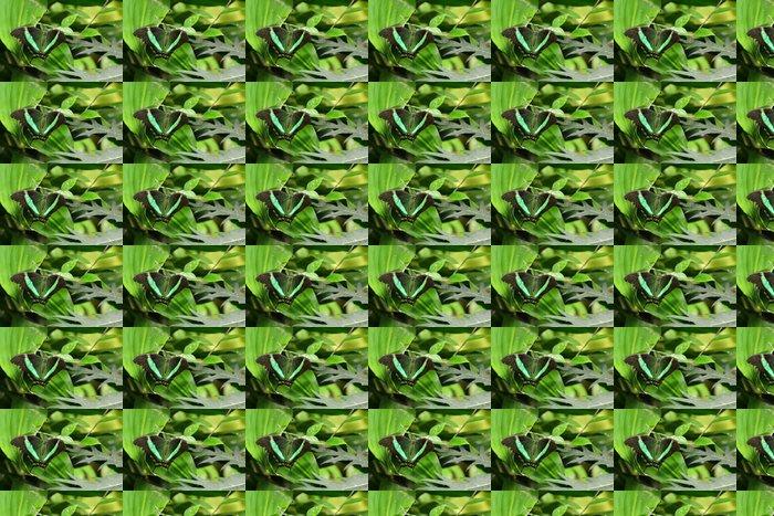 Vinylová Tapeta Emerald otakárek portrét. - Ostatní Ostatní