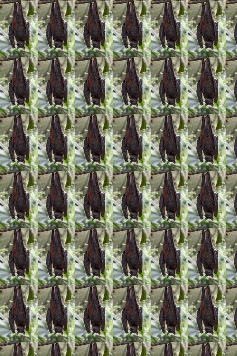 Vinylová Tapeta Malajský bat visí na větvi stromu - Savci