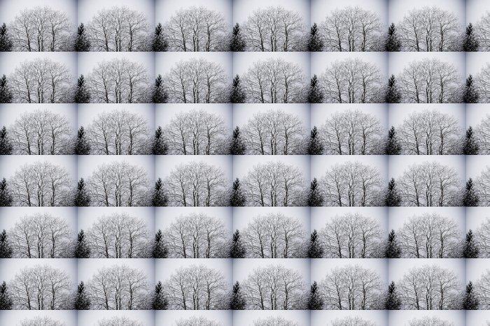 Vinylová Tapeta Snow-covered tree - Roční období