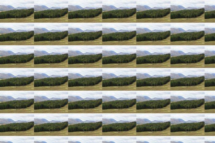 Vinylová Tapeta Skotská vysočina - Beautiful Scenery - Hory
