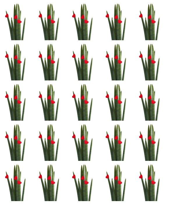 Vinylová Tapeta Plante verte fleur en forme de coeur rouge - Mezinárodní svátky