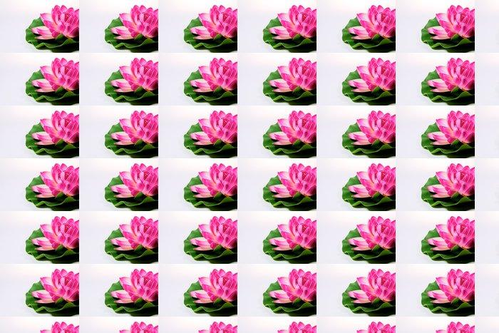 Vinylová Tapeta Lotosový květ - Zdraví a medicína