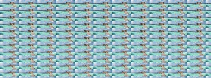 Vinylová Tapeta Overwater vila na laguně - Prázdniny