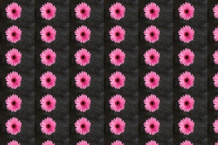 Vinylová Tapeta Gerbera na Slate - Portrét - Květiny
