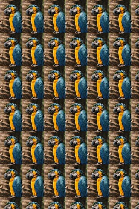 Vinylová Tapeta Blue-a-žlutý papoušek - Ara ararauna ... - Témata
