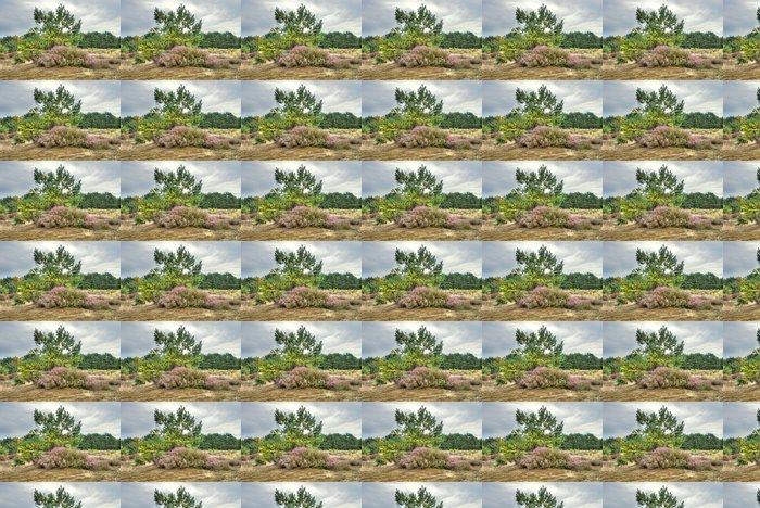 Vinil Duvar Kağıdı Moor peyzaj - Gökyüzü