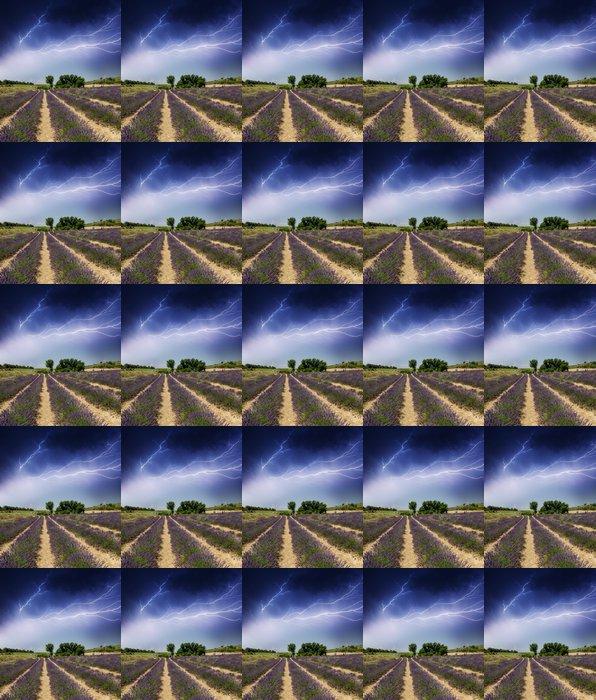 Vinylová Tapeta Krásné levandule pole v létě - Roční období