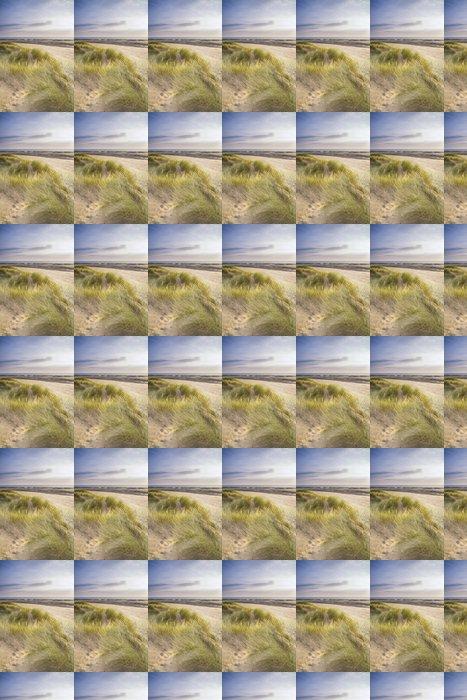 Vinylová Tapeta Letní pohled na večer krajina po travnatých písečných dun na pláži - Nebe