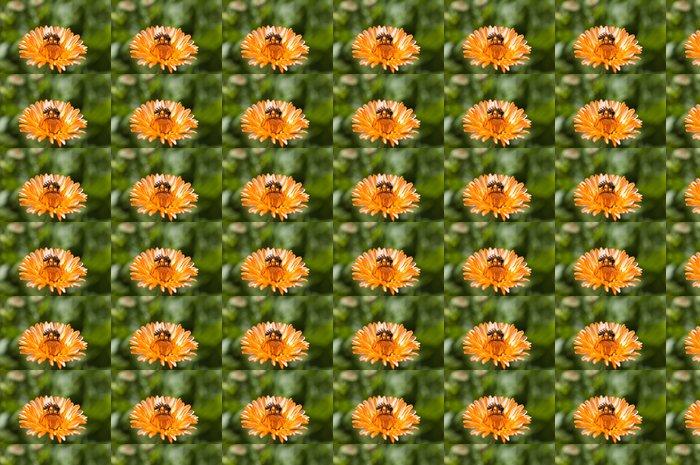Vinylová Tapeta Slunečnice a včelí - Roční období