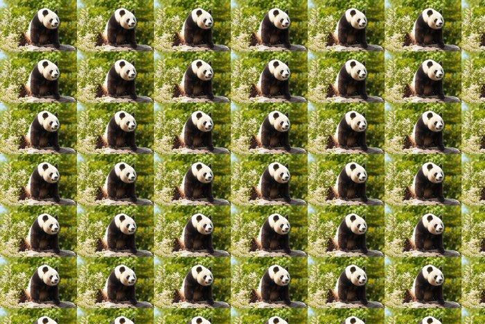 Vinylová Tapeta Panda Geant - Témata