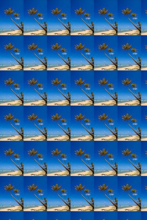 Vinylová Tapeta Palmy a krásná pláž v Praia do Amor Brazílie - Amerika