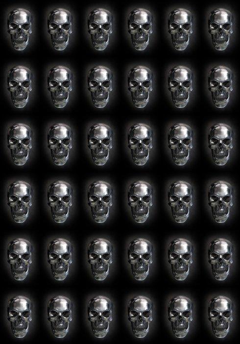 Metallic skull Vinyl Wallpaper - Signs and Symbols
