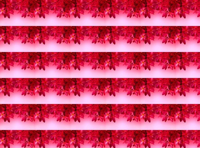 Vinylová Tapeta Red Frangipani květ na růžovém pozadí - Květiny