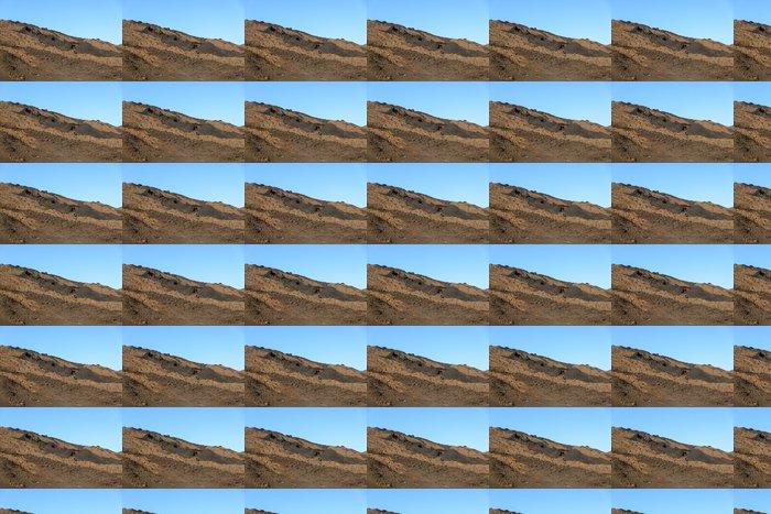 Vinylová Tapeta Barevné suché láva v sopce Piton de la Fournaise - Hory